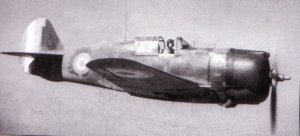 The Hawk was a strong aeroplane, Capable of taking many hits